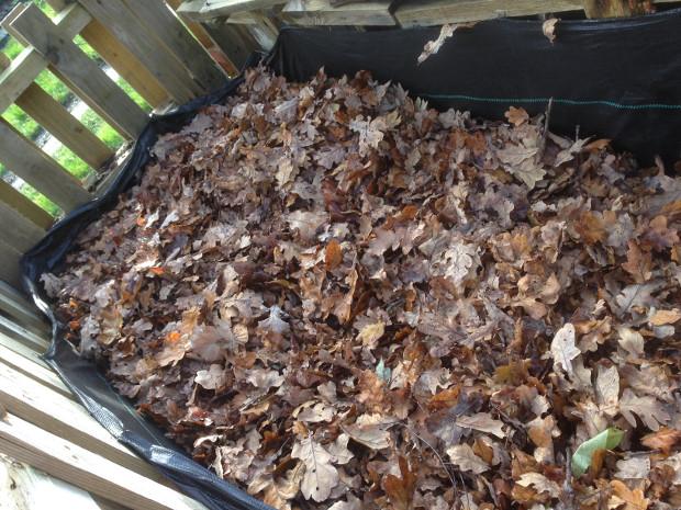 leafmould