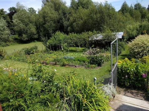 Allotments in Poland 10