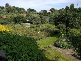 Allotments in Poland 4