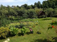 Allotments in Poland 8