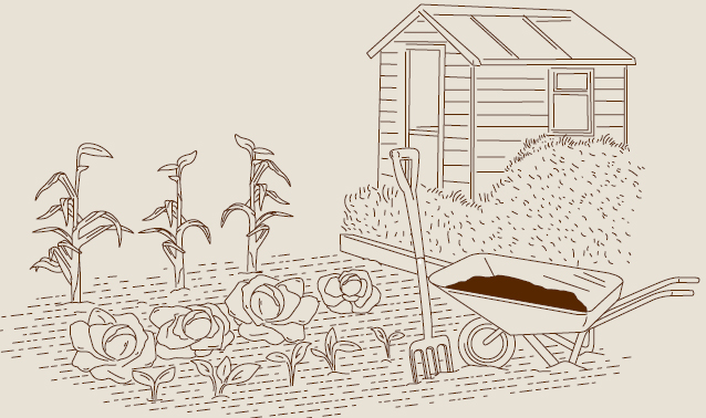 Grow your Own Plots - Wyevale Garden Centres