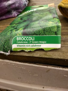 Broccoli Green Magic