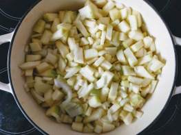 Marrow Chutney Recipe 1