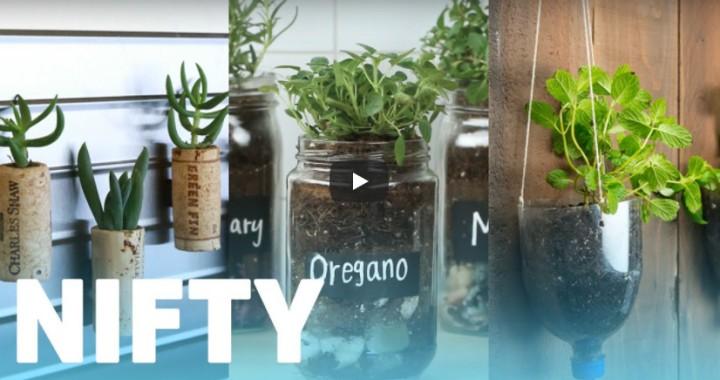 10 Favourite Gardening Buzzfeed videos#3