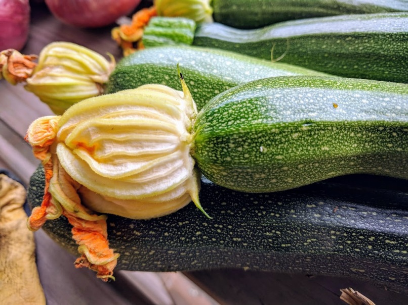 Courgettes 2