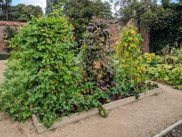 Painshill, Kitchen garden 9
