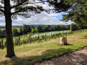 Painshill, Kitchen garden Featured