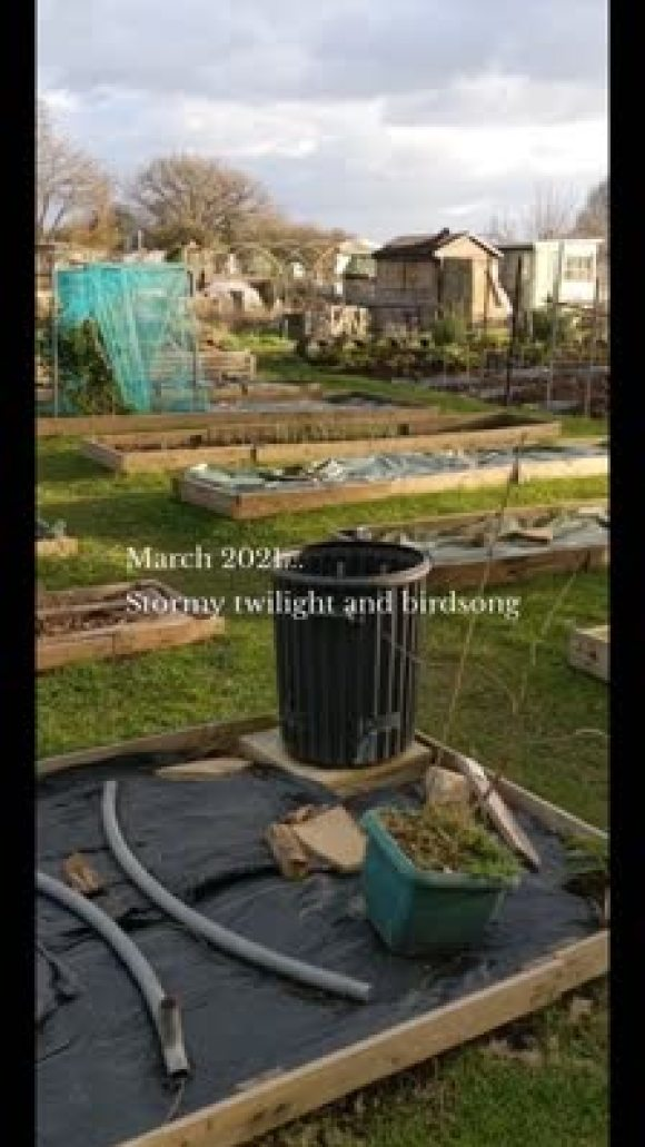 March 2021... Stormy twilight and birdsong